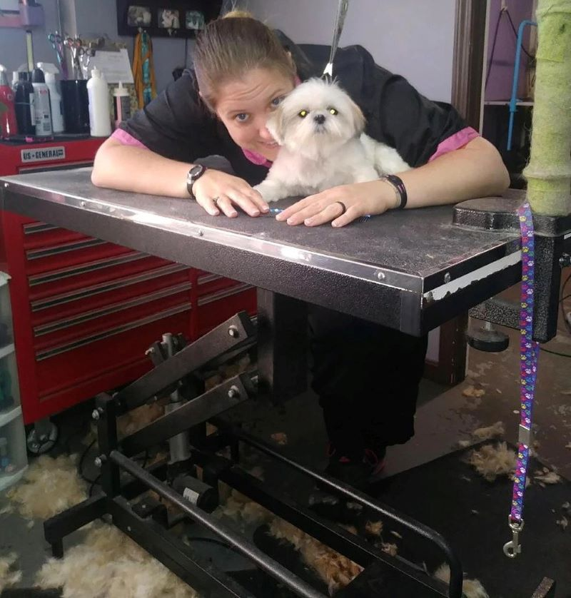 Small Dog Groomer Louisville KY