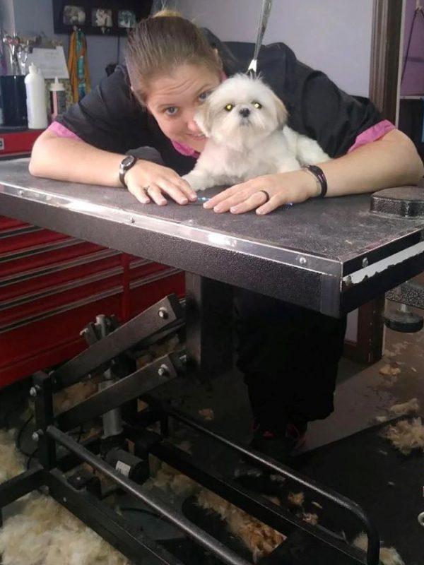 Small Dog Groomer Louisville KY